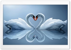 Love Ultra HD Wallpaper for 4K UHD Widescreen desktop, tablet & smartphone