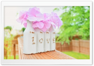 Love - Spring HD Wide Wallpaper for Widescreen