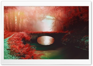 Love Bridge HD Wide Wallpaper for Widescreen