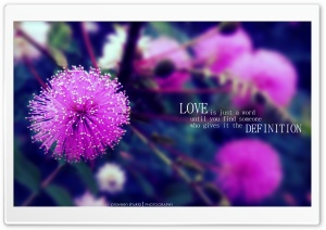 Love Definition HD Wide Wallpaper for 4K UHD Widescreen desktop & smartphone