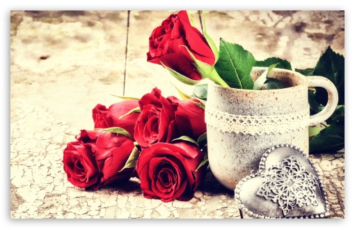 Love, Fresh Cut Red Roses, antique table ❤ 4K UHD Wallpaper for Wide 16:10 5:3 Widescreen WHXGA WQXGA WUXGA WXGA WGA ; 4K UHD 16:9 Ultra High Definition 2160p 1440p 1080p 900p 720p ; UHD 16:9 2160p 1440p 1080p 900p 720p ; Standard 4:3 5:4 3:2 Fullscreen UXGA XGA SVGA QSXGA SXGA DVGA HVGA HQVGA ( Apple PowerBook G4 iPhone 4 3G 3GS iPod Touch ) ; Smartphone 16:9 5:3 2160p 1440p 1080p 900p 720p WGA ; Tablet 1:1 ; iPad 1/2/Mini ; Mobile 4:3 5:3 3:2 16:9 5:4 - UXGA XGA SVGA WGA DVGA HVGA HQVGA ( Apple PowerBook G4 iPhone 4 3G 3GS iPod Touch ) 2160p 1440p 1080p 900p 720p QSXGA SXGA ;