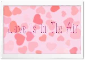 Love is in the Air HD Wide Wallpaper for Widescreen