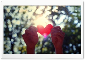 Love Light Shining HD Wide Wallpaper for Widescreen