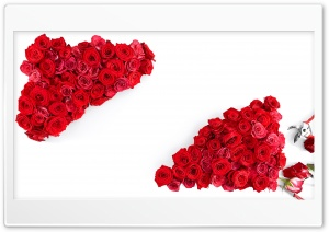 Love Red Roses HD Wide Wallpaper for 4K UHD Widescreen desktop & smartphone