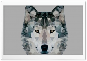 Low Polygonal Wolf HD Wide Wallpaper for Widescreen