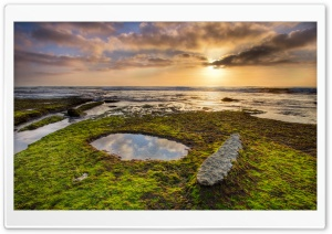 Low Tide HD Wide Wallpaper for Widescreen