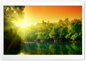 Lush Green Forest River At Sunrise HD Wide Wallpaper for Widescreen