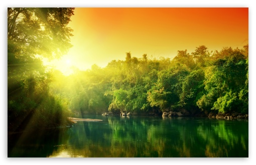 Lush Green Forest River At Sunrise HD wallpaper for Standard 4:3 5:4 Fullscreen UXGA XGA SVGA QSXGA SXGA ; Wide 16:10 5:3 Widescreen WHXGA WQXGA WUXGA WXGA WGA ; HD 16:9 High Definition WQHD QWXGA 1080p 900p 720p QHD nHD ; Other 3:2 DVGA HVGA HQVGA devices ( Apple PowerBook G4 iPhone 4 3G 3GS iPod Touch ) ; Mobile VGA WVGA iPhone iPad PSP Phone - VGA QVGA Smartphone ( PocketPC GPS iPod Zune BlackBerry HTC Samsung LG Nokia Eten Asus ) WVGA WQVGA Smartphone ( HTC Samsung Sony Ericsson LG Vertu MIO ) HVGA Smartphone ( Apple iPhone iPod BlackBerry HTC Samsung Nokia ) Sony PSP Zune HD Zen ; Tablet 2 Android ; Dual 5:4 QSXGA SXGA ;