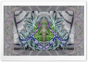 Macro - Pavement design with plants HD Wide Wallpaper for 4K UHD Widescreen desktop & smartphone