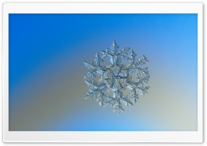 Macro Snowflake Photography HD Wide Wallpaper for Widescreen