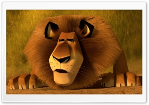 Madagascar 3 Alex The Lion HD Wide Wallpaper for Widescreen