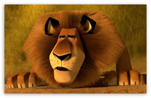 Madagascar 3 Alex The Lion HD wallpaper for Wide 16:10 5:3 Widescreen WHXGA WQXGA WUXGA WXGA WGA ; HD 16:9 High Definition WQHD QWXGA 1080p 900p 720p QHD nHD ; Standard 3:2 Fullscreen DVGA HVGA HQVGA devices ( Apple PowerBook G4 iPhone 4 3G 3GS iPod Touch ) ; Mobile 5:3 3:2 16:9 - WGA DVGA HVGA HQVGA devices ( Apple PowerBook G4 iPhone 4 3G 3GS iPod Touch ) WQHD QWXGA 1080p 900p 720p QHD nHD ;