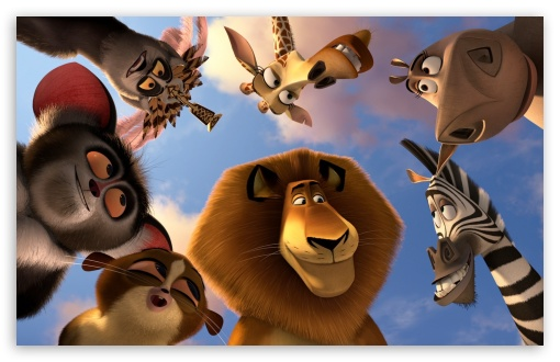 Madagascar 3 Animals HD wallpaper for Wide 16:10 5:3 Widescreen WHXGA WQXGA WUXGA WXGA WGA ; HD 16:9 High Definition WQHD QWXGA 1080p 900p 720p QHD nHD ; Mobile 5:3 16:9 - WGA WQHD QWXGA 1080p 900p 720p QHD nHD ;