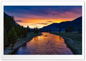 Madison River, Yellowstone National Park, Sunset HD Wide Wallpaper for 4K UHD Widescreen desktop & smartphone