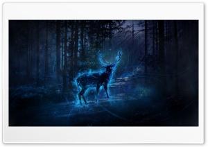 Magic Ultra HD Wallpaper for 4K UHD Widescreen desktop, tablet & smartphone
