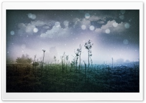 Magic Morning HD Wide Wallpaper for Widescreen
