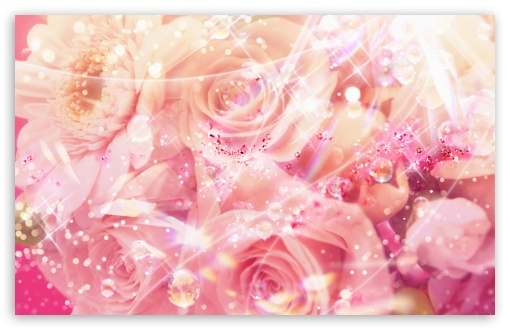 Magic Roses ❤ 4K UHD Wallpaper for Wide 16:10 5:3 Widescreen WHXGA WQXGA WUXGA WXGA WGA ; 4K UHD 16:9 Ultra High Definition 2160p 1440p 1080p 900p 720p ; Standard 4:3 5:4 3:2 Fullscreen UXGA XGA SVGA QSXGA SXGA DVGA HVGA HQVGA ( Apple PowerBook G4 iPhone 4 3G 3GS iPod Touch ) ; Tablet 1:1 ; iPad 1/2/Mini ; Mobile 4:3 5:3 3:2 16:9 5:4 - UXGA XGA SVGA WGA DVGA HVGA HQVGA ( Apple PowerBook G4 iPhone 4 3G 3GS iPod Touch ) 2160p 1440p 1080p 900p 720p QSXGA SXGA ;