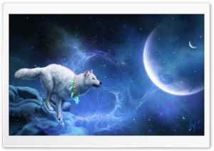 Magic White Wolf HD Wide Wallpaper for Widescreen