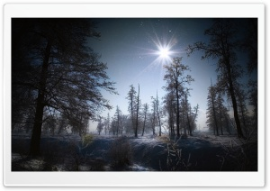 Magic Winter HD Wide Wallpaper for Widescreen