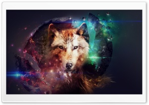 Magic Wolf HD Wide Wallpaper for 4K UHD Widescreen desktop & smartphone