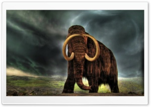 Mammoth HD Wide Wallpaper for Widescreen