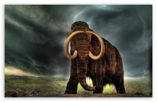 Mammoth HD wallpaper for Wide 16:10 5:3 Widescreen WHXGA WQXGA WUXGA WXGA WGA ; HD 16:9 High Definition WQHD QWXGA 1080p 900p 720p QHD nHD ; Standard 4:3 5:4 3:2 Fullscreen UXGA XGA SVGA QSXGA SXGA DVGA HVGA HQVGA devices ( Apple PowerBook G4 iPhone 4 3G 3GS iPod Touch ) ; Tablet 1:1 ; iPad 1/2/Mini ; Mobile 4:3 5:3 3:2 16:9 5:4 - UXGA XGA SVGA WGA DVGA HVGA HQVGA devices ( Apple PowerBook G4 iPhone 4 3G 3GS iPod Touch ) WQHD QWXGA 1080p 900p 720p QHD nHD QSXGA SXGA ;