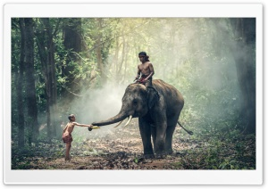 Man Riding an Elephant HD Wide Wallpaper for Widescreen