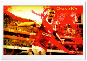 Marouane Chamakh HD Wide Wallpaper for Widescreen