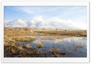 Marsh HD Wide Wallpaper for Widescreen