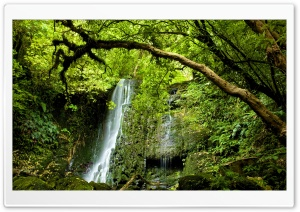 Matai Falls, New Zealand HD Wide Wallpaper for Widescreen