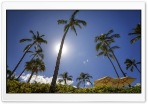 Maui HD Wide Wallpaper for Widescreen