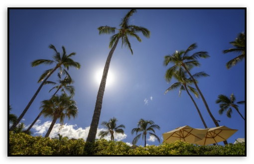Maui HD wallpaper for Wide 16:10 Widescreen WHXGA WQXGA WUXGA WXGA ;