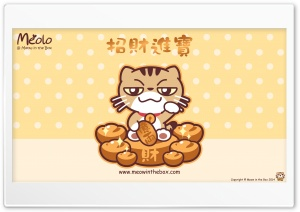 Meolo Chinese New Year - Meow in the Box HD Wide Wallpaper for Widescreen