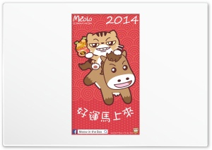 Meolo Chinese New Year Mobile Version - Meow in the Box HD Wide Wallpaper for 4K UHD Widescreen desktop & smartphone