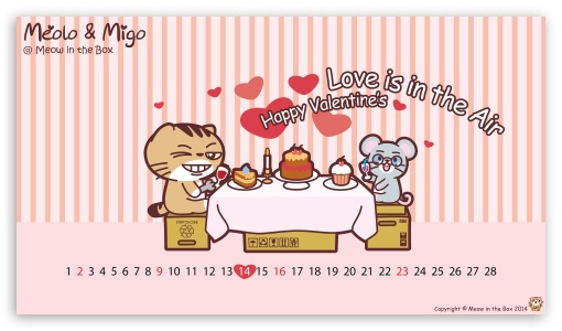 Meolo Valentines Day - Meow in the Box ❤ 4K UHD Wallpaper for 4K UHD 16:9 Ultra High Definition 2160p 1440p 1080p 900p 720p ; Mobile 16:9 - 2160p 1440p 1080p 900p 720p ;