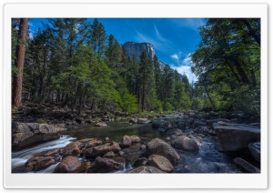 Merced River, El Capitan, Yosemite National Park, California HD Wide Wallpaper for 4K UHD Widescreen desktop & smartphone