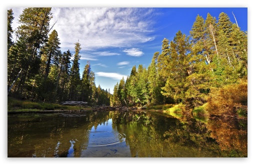 Merced River, Yosemite ❤ 4K UHD Wallpaper for Wide 16:10 5:3 Widescreen WHXGA WQXGA WUXGA WXGA WGA ; 4K UHD 16:9 Ultra High Definition 2160p 1440p 1080p 900p 720p ; Standard 4:3 5:4 3:2 Fullscreen UXGA XGA SVGA QSXGA SXGA DVGA HVGA HQVGA ( Apple PowerBook G4 iPhone 4 3G 3GS iPod Touch ) ; Tablet 1:1 ; iPad 1/2/Mini ; Mobile 4:3 5:3 3:2 16:9 5:4 - UXGA XGA SVGA WGA DVGA HVGA HQVGA ( Apple PowerBook G4 iPhone 4 3G 3GS iPod Touch ) 2160p 1440p 1080p 900p 720p QSXGA SXGA ;