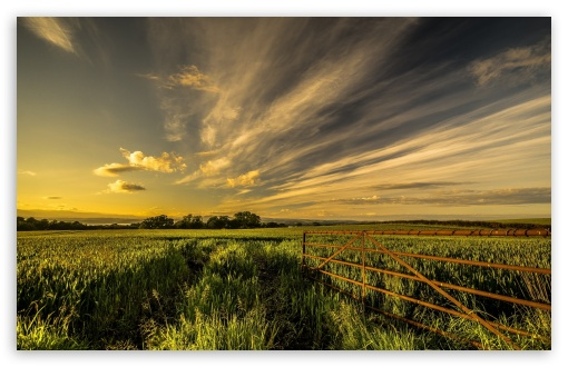 Metal Fence In The Field ❤ 4K UHD Wallpaper for Wide 16:10 5:3 Widescreen WHXGA WQXGA WUXGA WXGA WGA ; 4K UHD 16:9 Ultra High Definition 2160p 1440p 1080p 900p 720p ; Standard 4:3 5:4 3:2 Fullscreen UXGA XGA SVGA QSXGA SXGA DVGA HVGA HQVGA ( Apple PowerBook G4 iPhone 4 3G 3GS iPod Touch ) ; Tablet 1:1 ; iPad 1/2/Mini ; Mobile 4:3 5:3 3:2 16:9 5:4 - UXGA XGA SVGA WGA DVGA HVGA HQVGA ( Apple PowerBook G4 iPhone 4 3G 3GS iPod Touch ) 2160p 1440p 1080p 900p 720p QSXGA SXGA ;