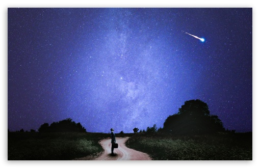 たたずむ人と流れ星