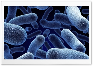 Microorganisms 3D HD Wide Wallpaper for Widescreen