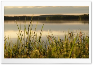 Midsummer in Lapland HD Wide Wallpaper for Widescreen