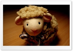 Mini Sheep HD Wide Wallpaper for Widescreen