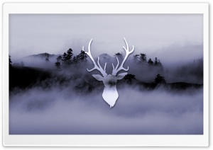 Misty Deer HD Wide Wallpaper for Widescreen