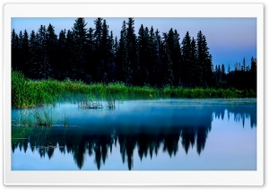 Misty Lake And Dark Forest HD Wide Wallpaper for Widescreen
