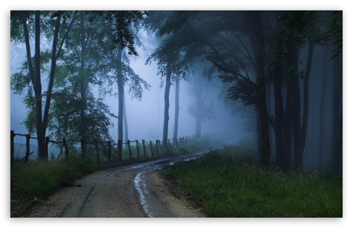 Misty Road HD wallpaper for Wide 16:10 5:3 Widescreen WHXGA WQXGA WUXGA WXGA WGA ; HD 16:9 High Definition WQHD QWXGA 1080p 900p 720p QHD nHD ; Standard 4:3 5:4 3:2 Fullscreen UXGA XGA SVGA QSXGA SXGA DVGA HVGA HQVGA devices ( Apple PowerBook G4 iPhone 4 3G 3GS iPod Touch ) ; Tablet 1:1 ; iPad 1/2/Mini ; Mobile 4:3 5:3 3:2 16:9 5:4 - UXGA XGA SVGA WGA DVGA HVGA HQVGA devices ( Apple PowerBook G4 iPhone 4 3G 3GS iPod Touch ) WQHD QWXGA 1080p 900p 720p QHD nHD QSXGA SXGA ; Dual 16:10 5:3 16:9 4:3 5:4 WHXGA WQXGA WUXGA WXGA WGA WQHD QWXGA 1080p 900p 720p QHD nHD UXGA XGA SVGA QSXGA SXGA ;
