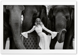 Model, Fashion, Elephants Ultra HD Wallpaper for 4K UHD Widescreen desktop, tablet & smartphone