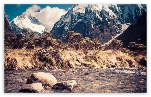Monkey Creek In New Zealand HD wallpaper for Standard 4:3 5:4 Fullscreen UXGA XGA SVGA QSXGA SXGA ; Wide 16:10 5:3 Widescreen WHXGA WQXGA WUXGA WXGA WGA ; HD 16:9 High Definition WQHD QWXGA 1080p 900p 720p QHD nHD ; Other 3:2 DVGA HVGA HQVGA devices ( Apple PowerBook G4 iPhone 4 3G 3GS iPod Touch ) ; Mobile VGA WVGA iPhone iPad PSP Phone - VGA QVGA Smartphone ( PocketPC GPS iPod Zune BlackBerry HTC Samsung LG Nokia Eten Asus ) WVGA WQVGA Smartphone ( HTC Samsung Sony Ericsson LG Vertu MIO ) HVGA Smartphone ( Apple iPhone iPod BlackBerry HTC Samsung Nokia ) Sony PSP Zune HD Zen ; Tablet 2 Android 3 DVGA HVGA HQVGA devices ( Apple PowerBook G4 iPhone 4 3G 3GS iPod Touch ) ;