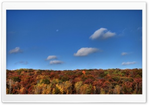 Moon Over Autumn HD Wide Wallpaper for Widescreen