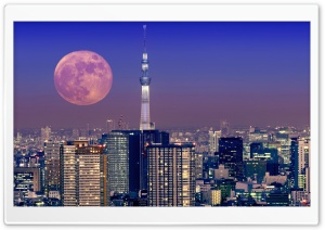 Moon Over Tokyo, Japan HD Wide Wallpaper for Widescreen