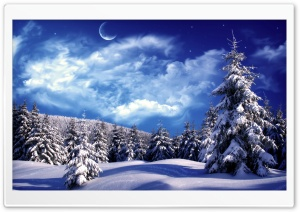 Moonlight Over Snowy Forest HD Wide Wallpaper for Widescreen